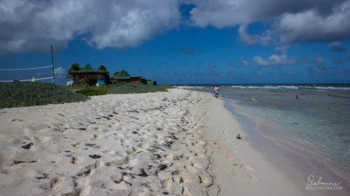 Deep white sand of Sandy Island