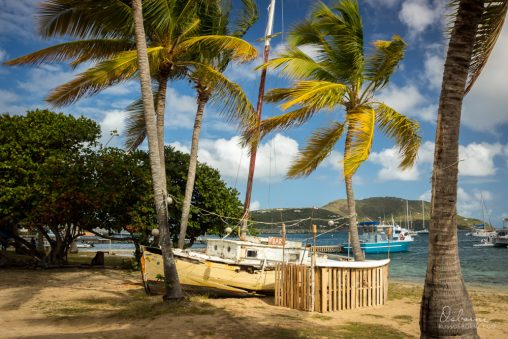 Trellis bay was quiet during the day